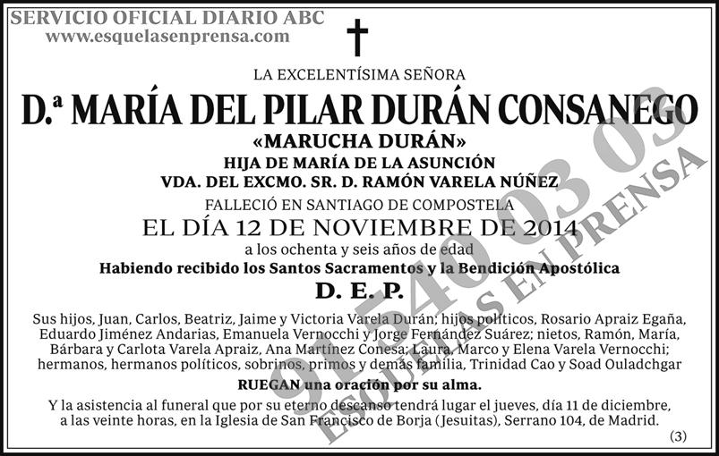María del Pilar Durán Consanego